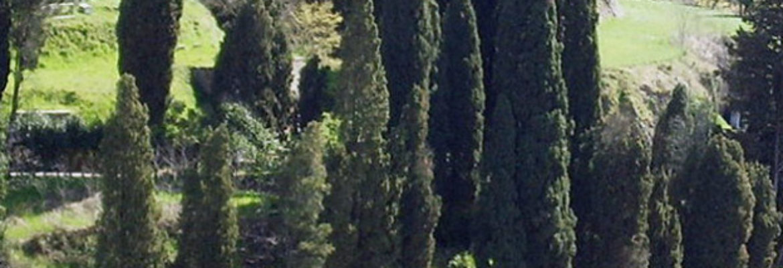 Jewish Cemetery of Pitigliano